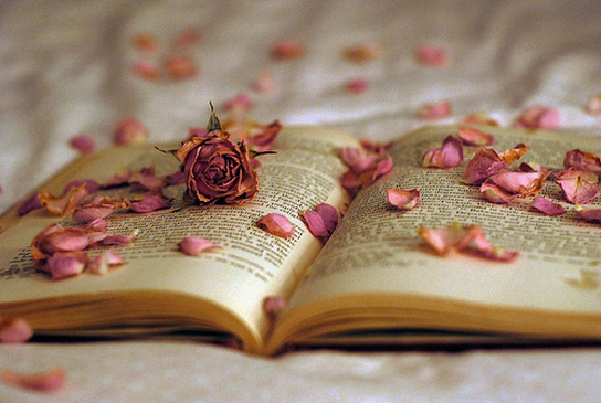 The 5 Books That Changed MyLife